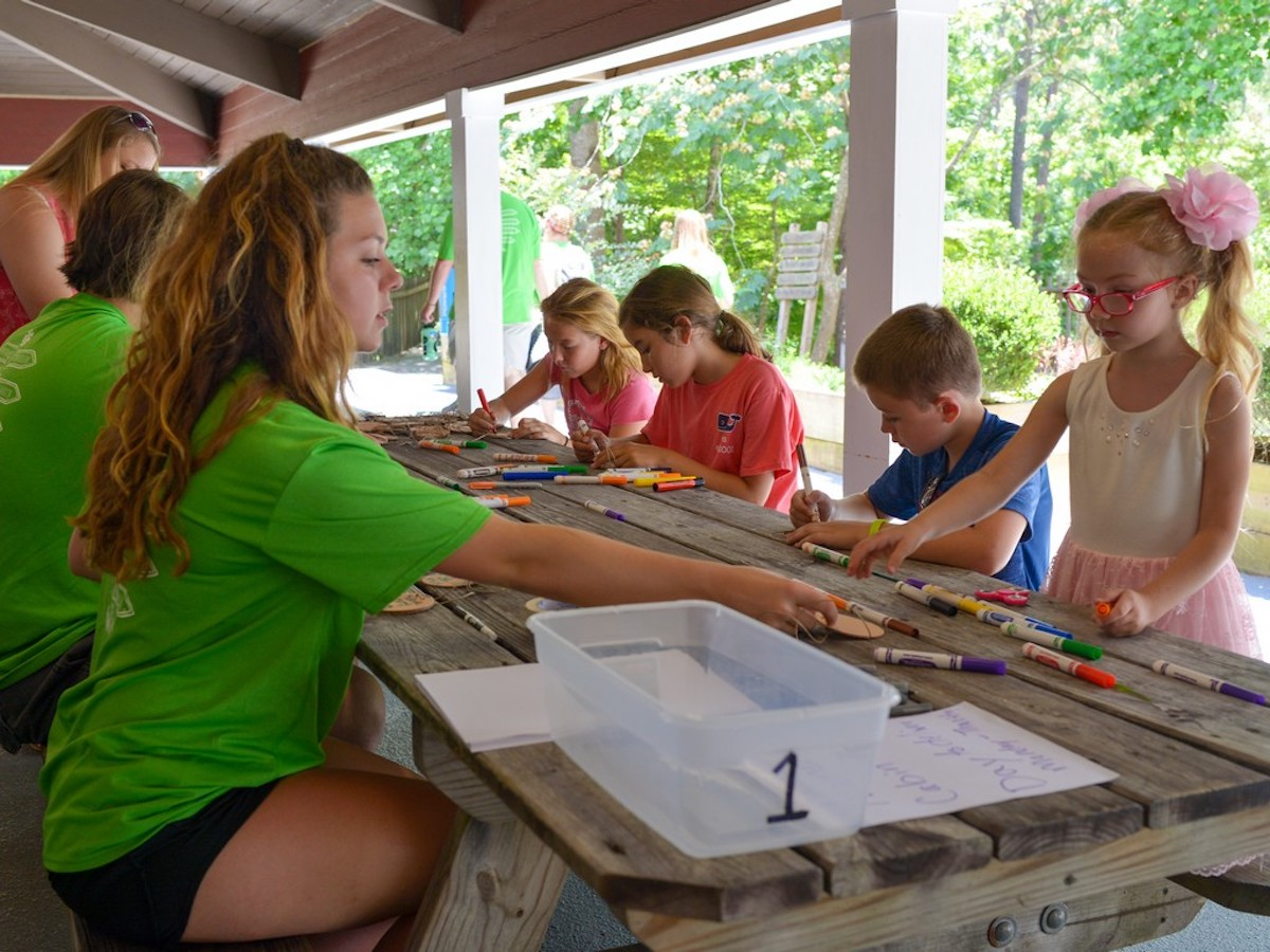 Why Camp – Diabetes Education & Camping Association